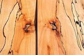 چوب راش